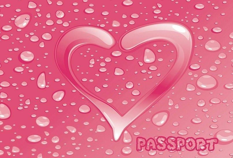 Обложка обкладинка на паспорт сердце любовь