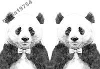 Обложка обкладинка на паспорт панда