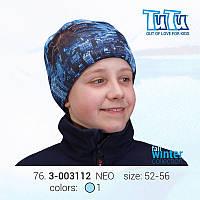Шапка 3D для мальчика TuTu 87 арт. 3-003112(3-003876)