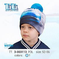 Шапка 3D для мальчика TuTu  77 арт. 3-003113