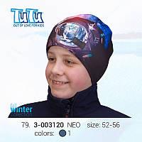 Шапка 3D для мальчика TuTu 79 арт. 3-003120