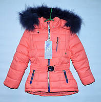 Зимняя куртка для девочки 2-6 лет TengTeng коралловая