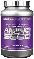 Аминокислоты Scitec Nutrition Amino 5600 (1000 tabs)