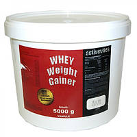 Гейнер Activevites Whey Weight Gainer 5 кг.