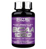 Аминокислоты (БЦАА) Scitec Nutrition BCAA 1000 100 капсул.