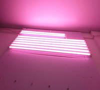 LED светильник Т5 600мм 9W Розовая для мяса