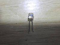 Светодиод 5мм синий, широкоугольный 20 шт. в лоте