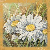 Картина бисером на холсте Идейка Ромашки (ВБ1011) 30 x 30 см
