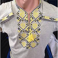 Вышиванка мужская трикотажная длинный рукав оптом и в розницу, Хмельницкий