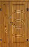 Двері вхідні БЕЗКОШТОВНА ДОСТАВКА в приватний будинок 1,20 х 2,05, фото 2