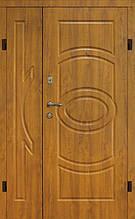 Двері вхідні БЕЗКОШТОВНА ДОСТАВКА в часний будинок 1,20 х 2,05