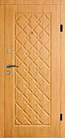 Двери входные металлические модель 102 тип 6