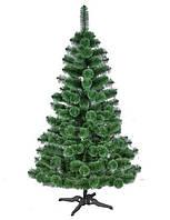 Сосна Magictrees Европейская Пушистая 3,0м, фото 1