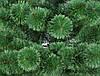 Сосна Magictrees Европейская Пушистая 1,8м, фото 2