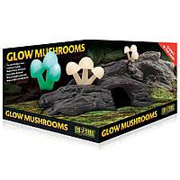 Hagen Exo Terra Glow Mushrooms - Natural Hide Out укрытие-декорация Светящиеся грибы