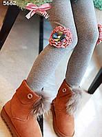 Теплые лосины для девочки. 110, 120 см, фото 1