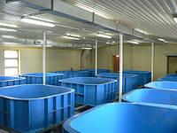 Бассейны для рыбоводства