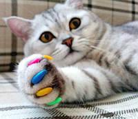 Защитные колпачки на ногти котов и собак - золотистые