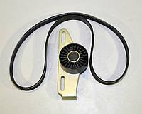 Комплект натяжитель + ремень генератора (-AC, PS) на Renault Dokker 1.6 2012-> Renault (Оригинал) - 117201773R