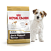Royal Canin Jack Russell Terrier Adult 1,5 кг для взрослых собак породы джек-рассел-терьер