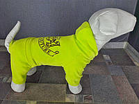 Велюровый костюм Dogs Bomba 30см для собак D-2 размер-4(S), фото 1