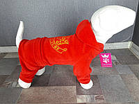 Велюровый костюм Dogs Bomba 26см для собак D-7 размер-2(XS), фото 1
