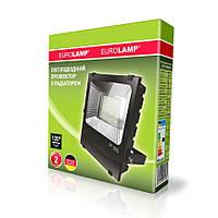 Прожектор светодиодный LED-FLR-SMD-100W