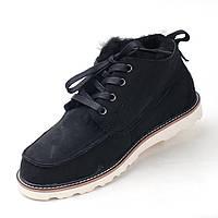 Зимние мужские ботинки UGG Neumel Black, черные замша, фото 1
