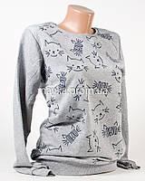 Батник женский хлопок p.44-46 светло-серый Кот Мяу N1908