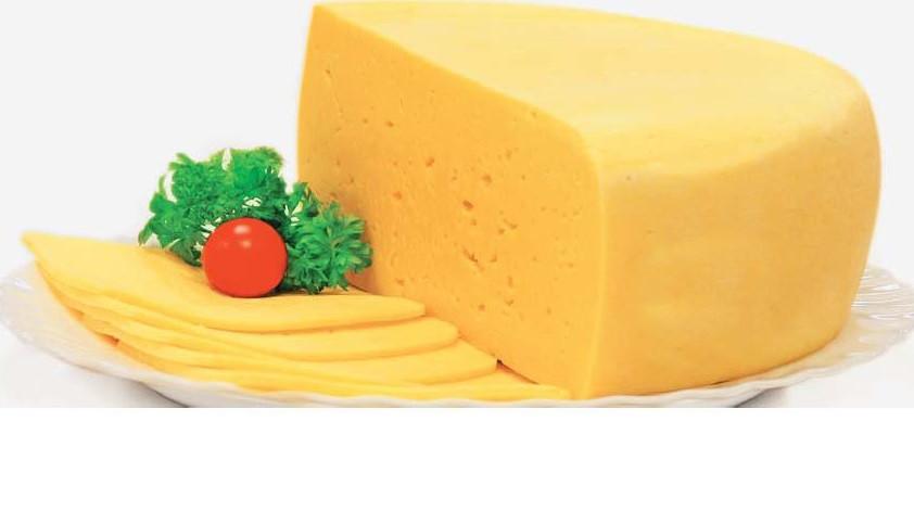 Закваска для сыра Российский