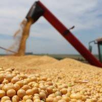 Перевалка, сушка, очистка зернобобовых культур
