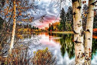 Алмазная вышивка Закат у реки в лесу