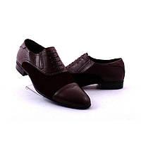 Мужские туфли Etor (34698)