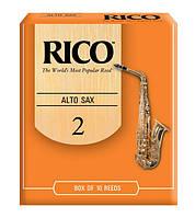 RICO RJA1020 Трости альт саксофона RICO 2