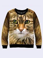 Свитшот Кошка
