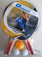Ракетки для настольного тенниса Donic Appelgren Level 300