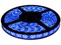 Гибкая светодиодная лента 300 SMD 3528, 5м, 12V, 8мм*2,7мм, влагостойкая, синяя