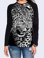 Лонгслив-реглан Взгляд хищного леопарда