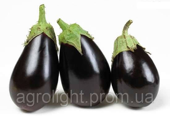 Купить Баклажан Клоринда F1 семена цена, Семинис Clorinda F1 - 100 шт.