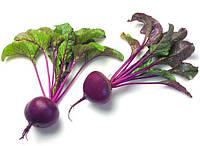 Купить Семена свеклы столовой. Буряк столовий - насіння