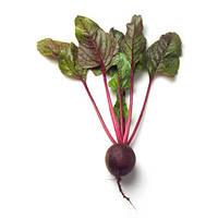 Купить Семена свеклы для посева - Детройт дарк ред UG