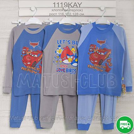 Пижама на мальчика _5_6-7года, , хлопок-интерлок, 2215инк, в наличии 116,122,128  Рост, фото 2