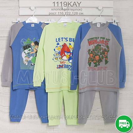 Пижама на мальчика 5_6_7года, , хлопок-интерлок, 2215инк, в наличии 116,122,128  Рост, фото 2