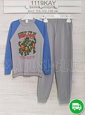 Пижама на мальчика 5_6_7года, , хлопок-интерлок, 2215инк, в наличии 116,122,128  Рост, фото 3