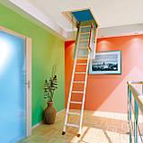 Горищні сходи FAKRO, фото 8