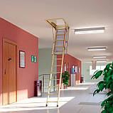 Горищні сходи FAKRO, фото 9