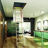 Горищні сходи FAKRO, фото 10
