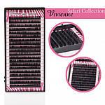 Ресницы черные Safari Collection один размер 20 ЛИНИЙ 0,1 D 10