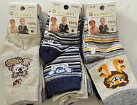 Детские носочки на мальчиков оптом, Mr.Pamut , 15-17,21-23,23-26 рр., артCP 5001