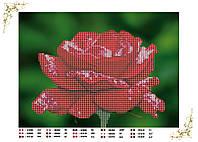 Вышивка бисером Роза А4